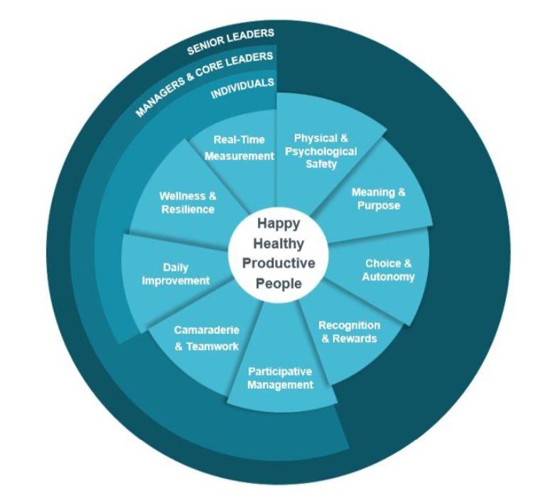 IHI Framework for Improving Joy in Work
